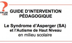 guideintervention aspergeraide