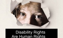 Disability Rights International