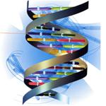 variants genetique